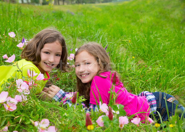 happy twin sister girls playing on spring flowers meadow Stock photo © lunamarina