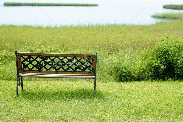 Bench over the green grass on the lake Stock photo © lunamarina