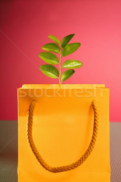 Umwelt Erhaltung Konsumismus Einkaufstasche Anlage Warenkorb Stock foto © lunamarina