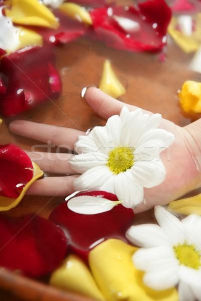 Aromaterapia flores mão banho rosa Foto stock © lunamarina