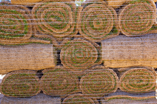 Natural grass turf lawn in rolls stacked Stock photo © lunamarina