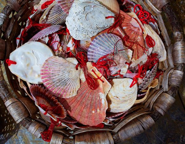 Manier galicië shell stad reizen Stockfoto © lunamarina