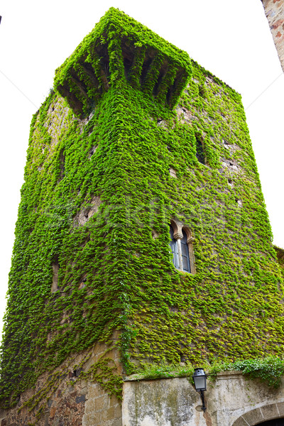 Caceres Torre del Sande tower in Spain Stock photo © lunamarina