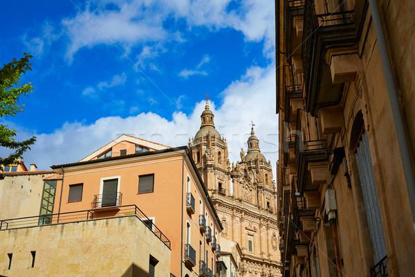 Salamanca Clerecia church in Spain Stock photo © lunamarina