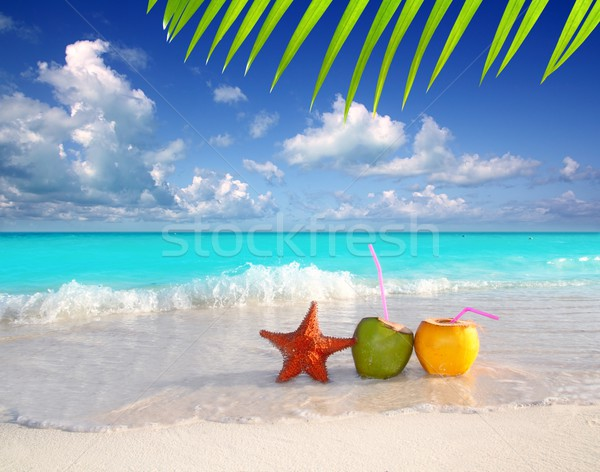 coconut cocktails juice and starfish in tropical beach Stock photo © lunamarina