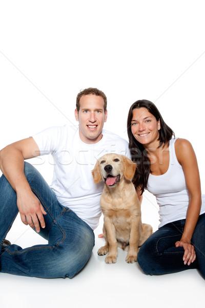 Pár szeretet kutyakölyök kutya golden retriever izolált Stock fotó © lunamarina