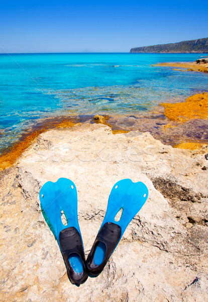 Balearic Formentera island with scuba diving fins Stock photo © lunamarina