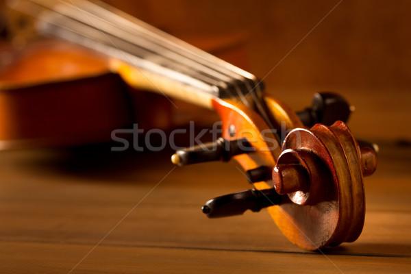 Klasszikus zene hegedű klasszikus fából készült arany Stock fotó © lunamarina