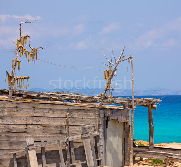 Viento secado peces típico playa Foto stock © lunamarina