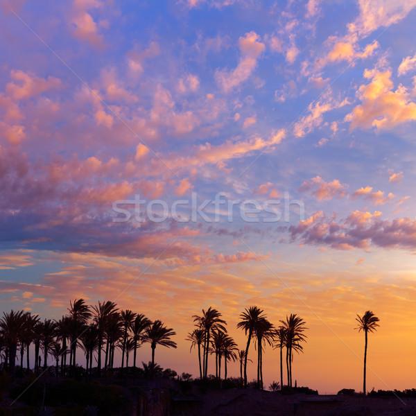 Strand zonsopgang middellandse zee Spanje water boom Stockfoto © lunamarina