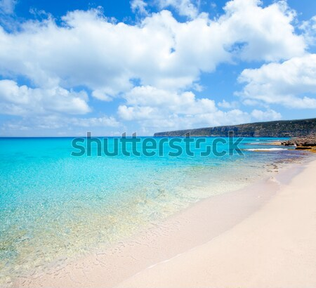 Mallorca Marques beach Es Trenc Estany Estanque Stock photo © lunamarina