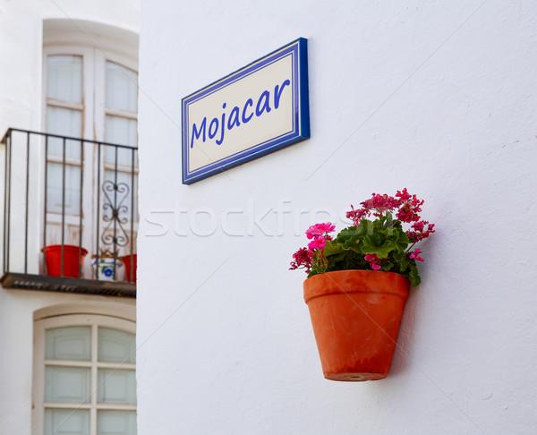 Biały morze Śródziemne w. Hiszpania kwiaty wiosną Zdjęcia stock © lunamarina