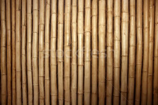 Bamboo cane row arrangement background Stock photo © lunamarina