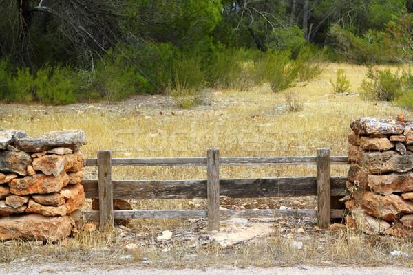 メーソンリー 石の壁 木製 フェンス 松 森林 ストックフォト © lunamarina