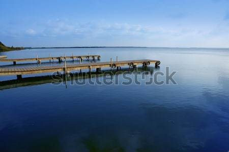 Albufera lake wetlands in Valencia Spain Stock photo © lunamarina