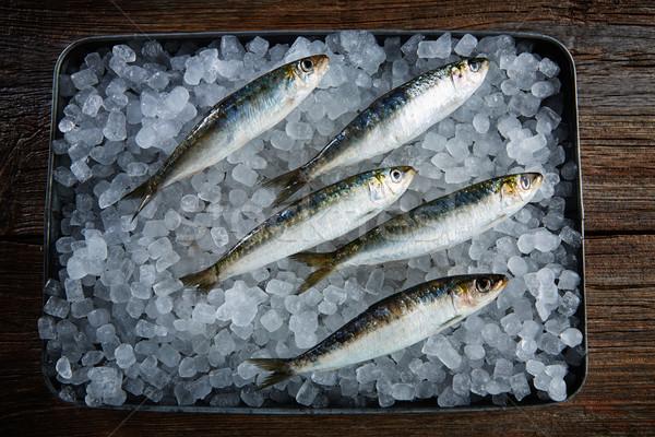 Sardines fresh fishes on ice Stock photo © lunamarina