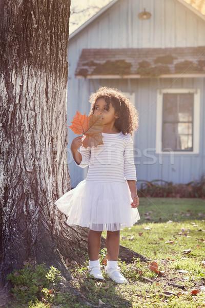 Photo stock: Kid · fille · automne · feuille · jouer
