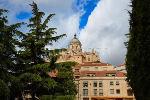 Salamanca Cathedral in Spain Stock photo © lunamarina