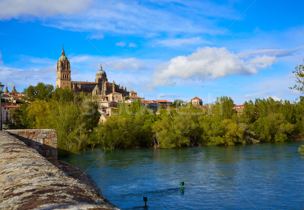 Salamanca skyline and roman bridge on Tormes Stock photo © lunamarina