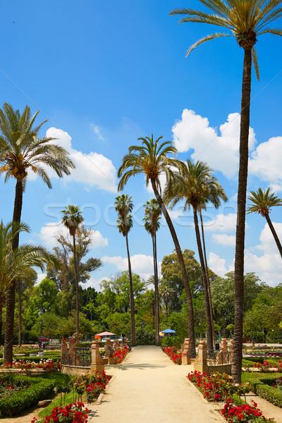 ストックフォト: 公園 · 庭園 · スペイン · アンダルシア · 建物 · 市