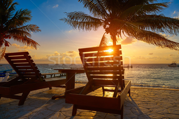 Photo stock: Sunrise · plage · palmiers · eau · lumière · fond
