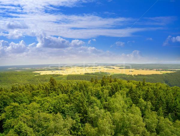 山 ドイツ ツリー 木材 森林 ストックフォト © lunamarina