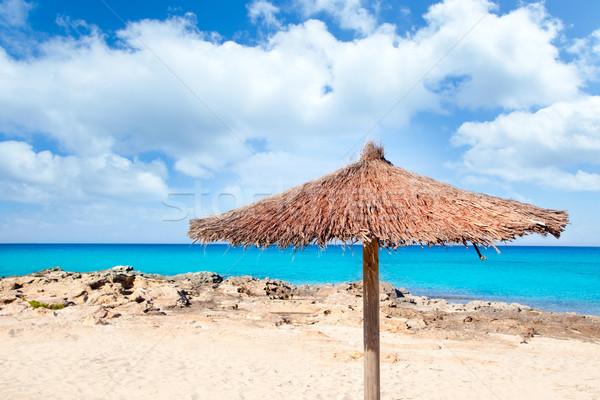 Balearic Formentera island with umbrella dried sunroof Stock photo © lunamarina