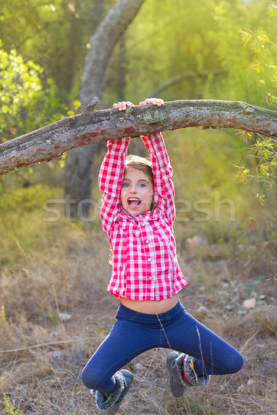 children girl swinging in a trunk in pine forest Stock photo © lunamarina