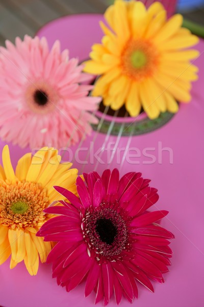 Hippie flor amarelo rosa guitarra flower power Foto stock © lunamarina