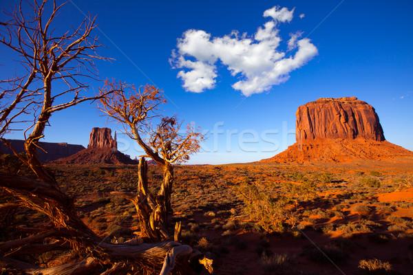 Foto stock: Vale · ocidente · secas · Utah · céu