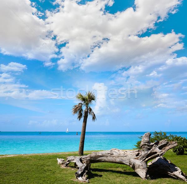 キー 西 ビーチ 砦 公園 フロリダ ストックフォト © lunamarina