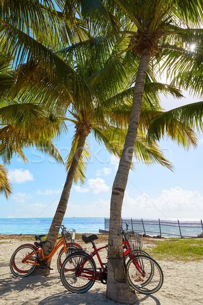 Key west florida beach Clearence S Higgs Stock photo © lunamarina