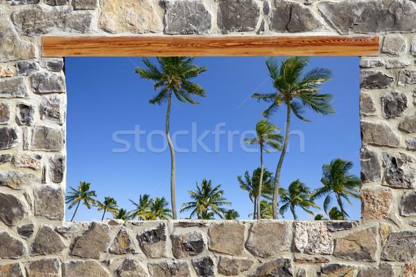 Pierre maçonnerie mur fenêtre tropicales palmiers Photo stock © lunamarina