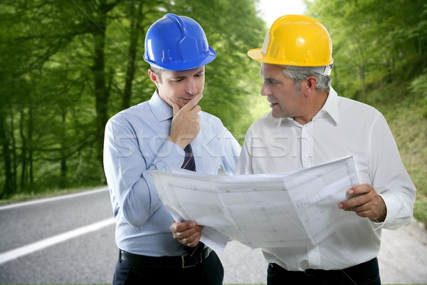 engineer architect two expertise plan hardhat forest road Stock photo © lunamarina