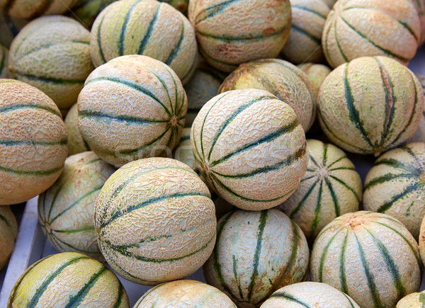 Cantaloupe melons at the marketplace Stock photo © lunamarina
