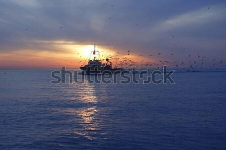Stock photo: professional fishing boat seagull on sunset sunrise
