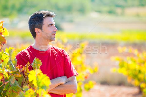 Harvester winemaker farmer proud of his vineyard Stock photo © lunamarina