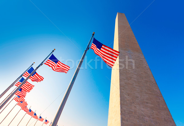 Washington Monument in District of Columbia DC Stock photo © lunamarina