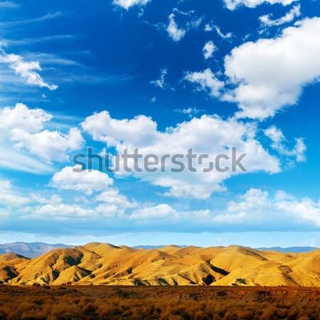 Almeria Tabernas desert mountains in Spain Stock photo © lunamarina