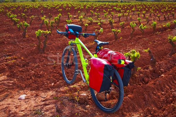 La Rioja vineyard bike The Way of Saint James Stock photo © lunamarina