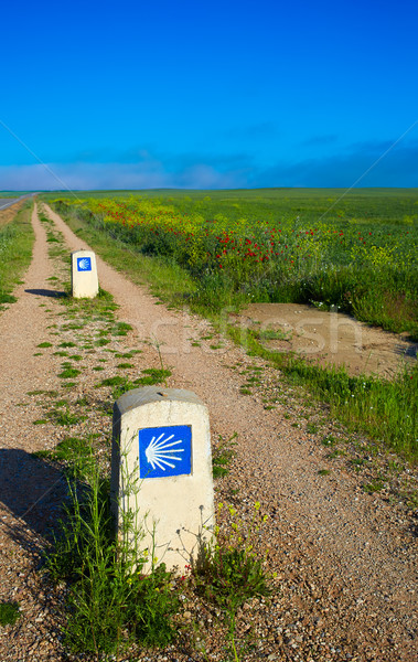 Way of saint James with shell sign fields Palencia Stock photo © lunamarina