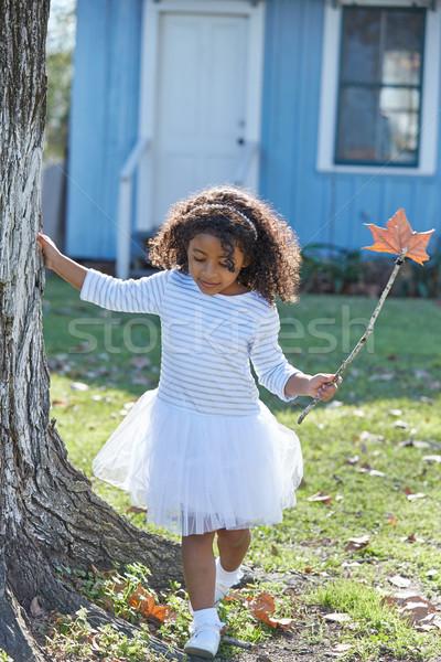 Photo stock: Kid · fille · automne · feuille · extérieur