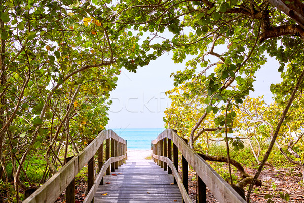 Florida bonita Bay Barefoot beach US Stock photo © lunamarina