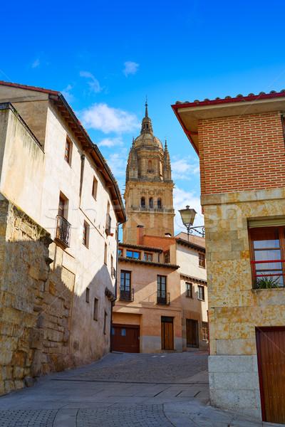 Salamanca Cathedral in Spain Via de la Plata Stock photo © lunamarina