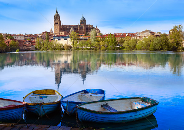 Salamanca skyline with Tormes river Spain Stock photo © lunamarina
