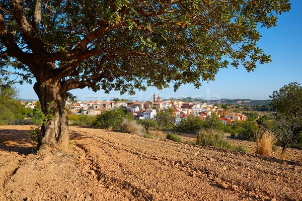 деревне Валенсия Испания небе пейзаж зеленый Сток-фото © lunamarina