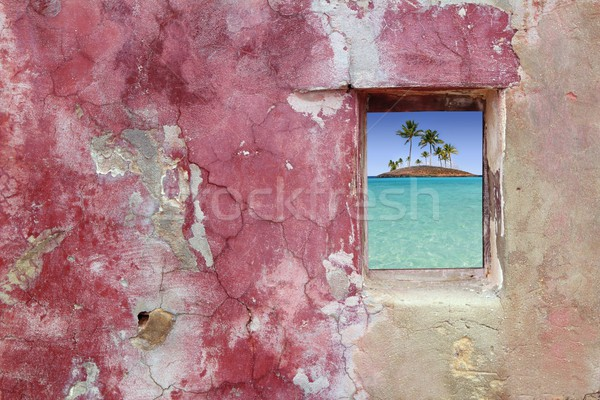 grunge pink red wall window palm trees island Stock photo © lunamarina