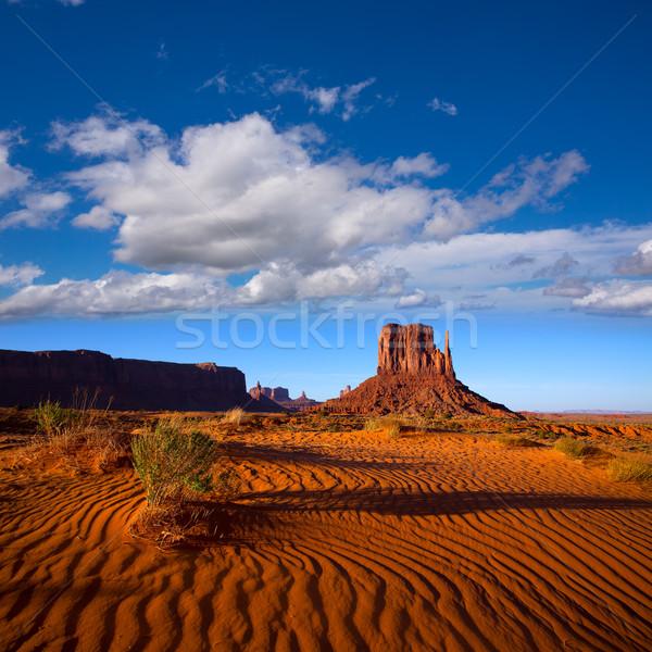 Vallée ouest Utah parc désert sable Photo stock © lunamarina