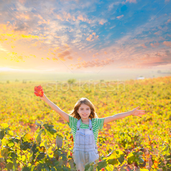 Stock photo: Kid girl in happy autumn vineyard field open arms with red leaf