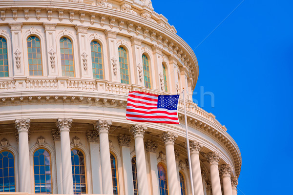 Edifício Washington DC bandeira americana EUA congresso casa Foto stock © lunamarina